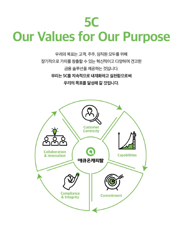 Our Purpose 5C Values
